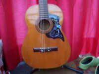 Hokada Full Size Acoustic Guitar.