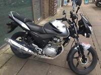 Hnda cbf 125 (2009) sport model 12 months mot quick sale