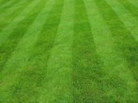 Grounds, Gardens and Trees - Offering a high standard quality grass mowing and gardening service.