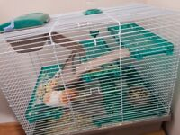 Hamster, cage and all accessorises