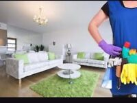 Cleaner with long experience looking for house cleaning work