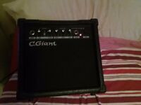 C.Giant guitar amp 27 Watts perfect starter amp!