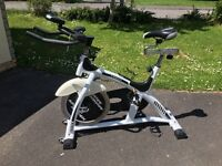 Gym Master Avalanche Spin Exercise Bike