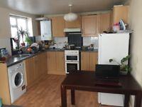 Spacious 2 double bedroom ground floor flat in heart of totterdown