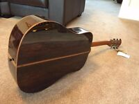 FARIDA SD-58 ACOUSTIC GUITAR, NEW WITH CASE