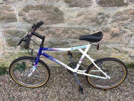"""16"""" Ninja Dart bike"""