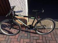 Bike for £50