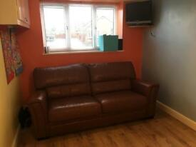 Genuine Leather Sofabed