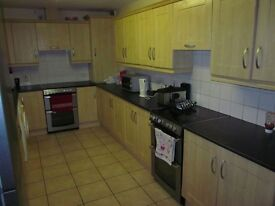 Single room to rent in University Area