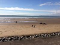 Self Catering Warm Comfy Holiday Home Bythesea Wales sleep 5 Book Now October 28th - 4th November