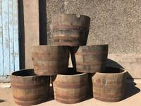 Whiskey barrel planters