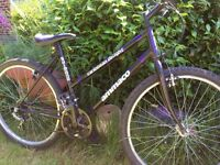 Adults (male /ladys) bike good working order good tires ,18 speed.