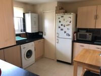 Room to rent with a young professional in Shirley