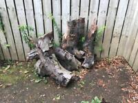 Logs for Firewood # FREE #