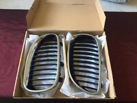 Genuine BMW X5 E53 Front Kidney Grills Pair