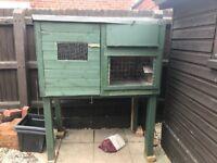 Used starter pigeon loft