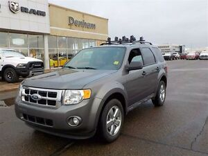 2010 Ford Escape Ford Escape XLT
