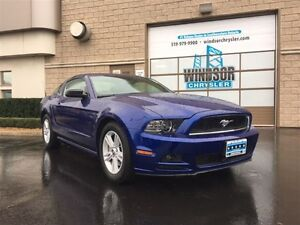 2013 Ford Mustang V6 - FORMER DAILY RENTAL