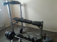 SET OF WEIGHT BENCH AND WEIGHTS