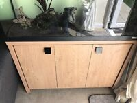 Fluval Roma 200 fish tank and stand with Fish
