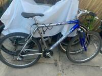 Saracen n-zyme mountain bike