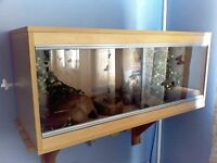 VivExotic medium vivarium beech effect with acccessories for complete snake housing set up
