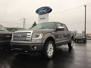 2013 Ford F-150 Platinum| FULLY LOADED|NEW TIRES