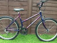 Girls / ladies Raleigh bike