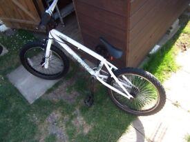feral punch bmx bike