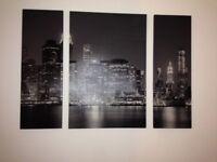 Large canvas 3 piece picture
