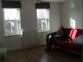 Beautiful 1 bedroom flat 15 min walk central Oxford,smart,light and airy ,with daylit studio/office