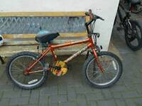 Kids bike / cycle from smoke and pet free home