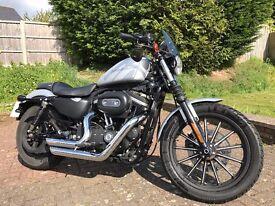 Harley Davidson Iron 883 Silver