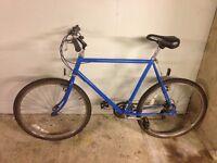 Vintage Men's Raleigh Bike Blue Fully Serviced