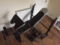 exercise/weights bench