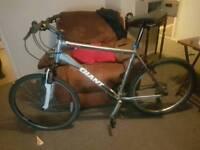 Giant mountain bike size xl