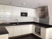 A Sun Kissed Larger than Average, Furnished 2 Bed, 2 Bath Modern Apartment