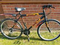 "Gents 22"" large size mountain bike."