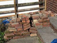 Spare old bricks - free