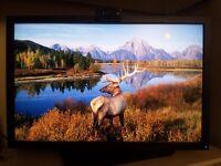 Dell UltraSharp U2410 widescreen monitor