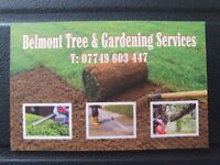 Belmont tree and Garden Services