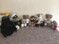 Brand New Teddies Bundle! *WITH TAGS*