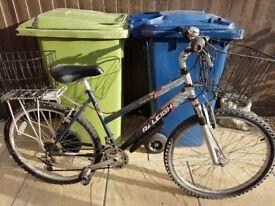 Ladies raleigh mantis bike