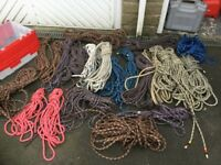 Selection of climbing ropes