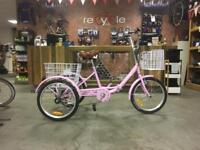 Jorvik Tricycle teen or adults £225ono (Like New)