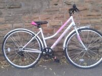 New Falcon Swift Ladies Hybrid Women's Bike - Silver/Pink - RRP £249