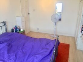 Spacious Room To Let