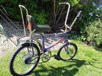 1972 raleigh chopper bike