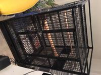 Rainforest Santos Parrot Cage