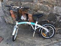 Proteam folding bike, hardly used - cost £140